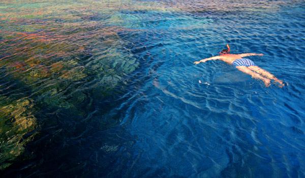 Snorkeling in Dhermi